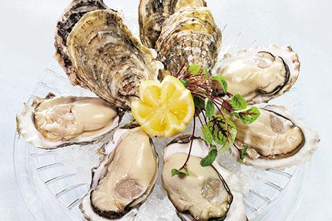 牡蠣の開け方6